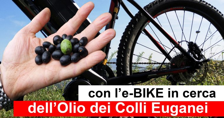 Con l'e-bike in cerca di Olio d'oliva dei Colli Euganei |Ivan Zogia |Well done in Italy